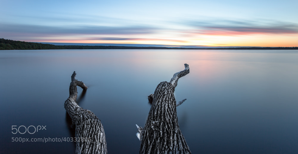 Photograph wooden legs by Christian Richter on 500px
