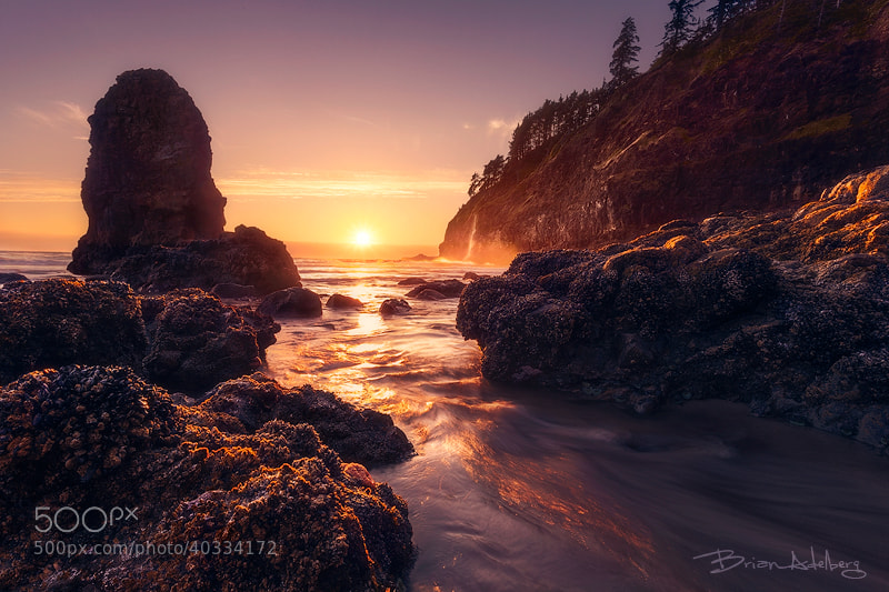 Photograph Golden Tide. by Brian Adelberg on 500px