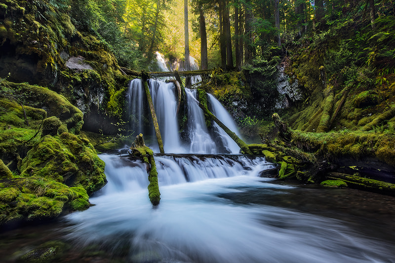 Photograph Panther creek falls by JAMAL ALBADIA on 500px