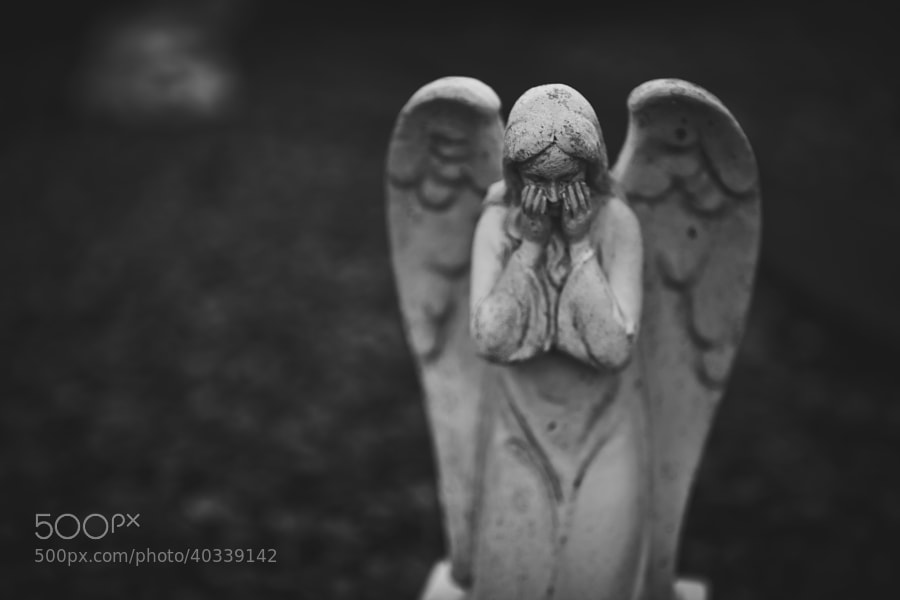 Don't blink! by Jennifer Renner on 500px.com