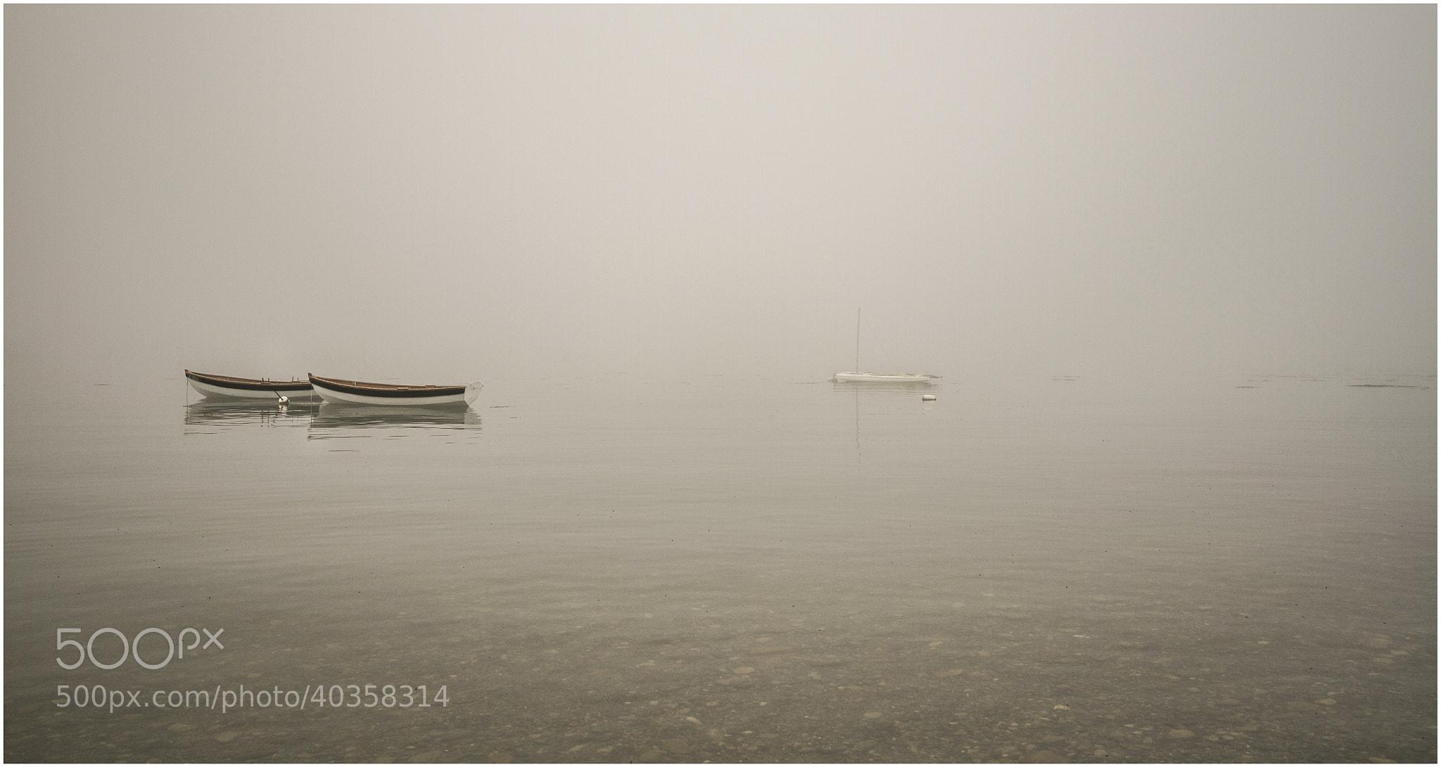 Photograph Morning Fog by Kerim Hadzi on 500px