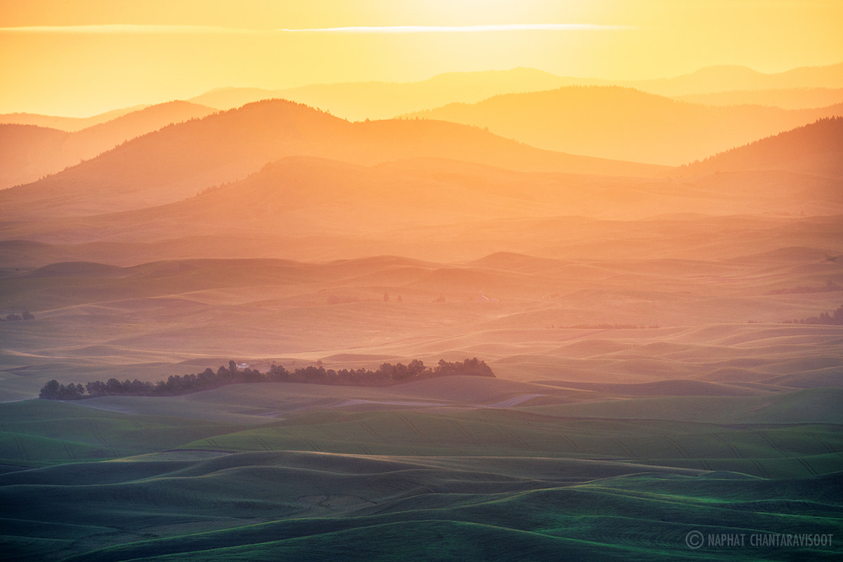 Photograph Good Morning Palouse   by Nae Chantaravisoot on 500px