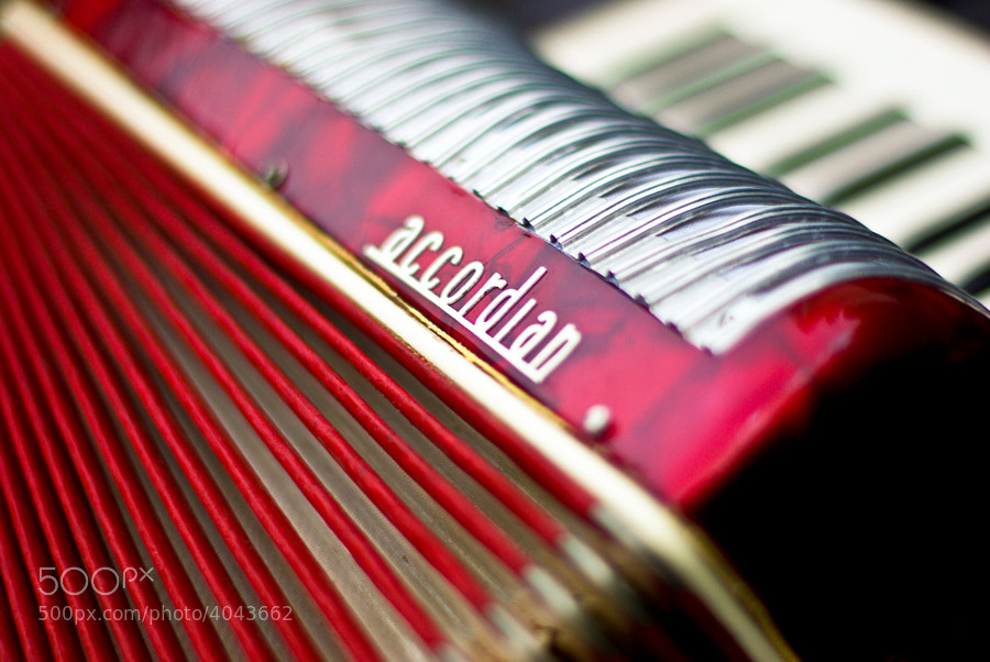 Who knew there were so many lines on an accordian?