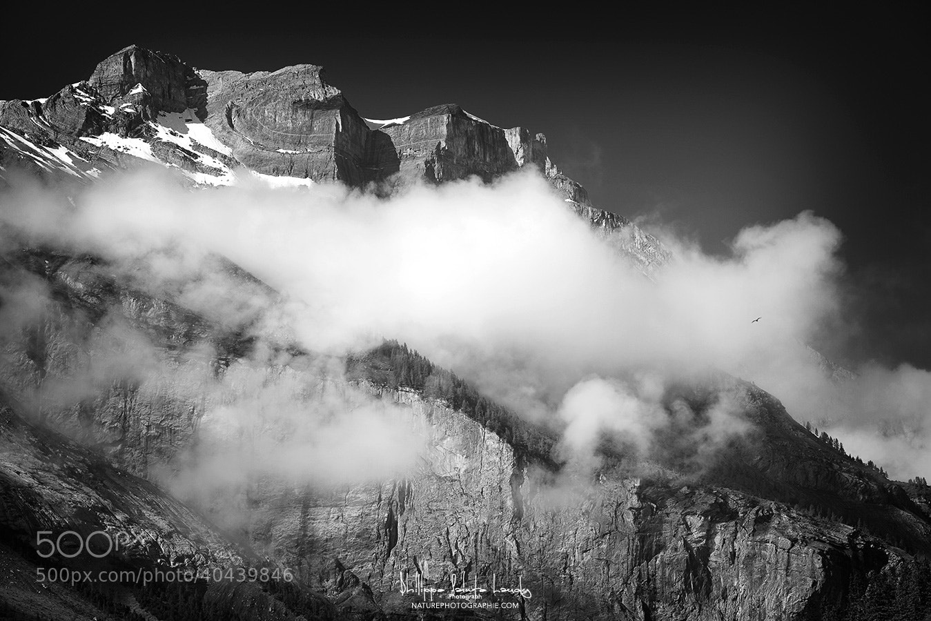 Photograph Cold Wind Blowin by Philippe Sainte-Laudy on 500px