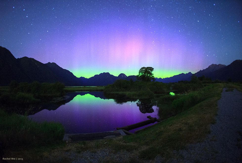 Photograph Northern Lights by Rachel Wei on 500px