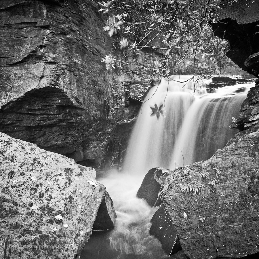 Photograph Welsh falls 3 by Tim Brook on 500px