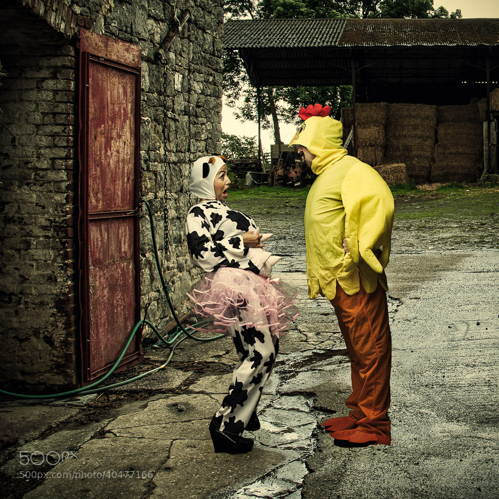 Photograph The cowstume and The Cockstume by Gilmar Smith on 500px