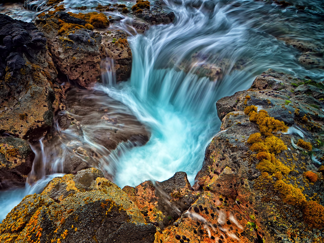 Photograph Reef Puka I by Mark Rogers on 500px