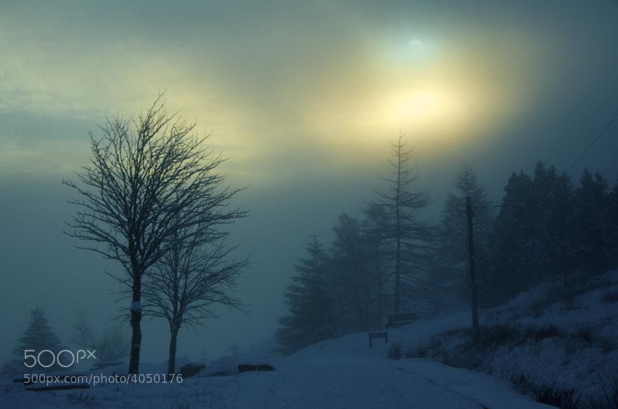 Argyll, Scotland, December