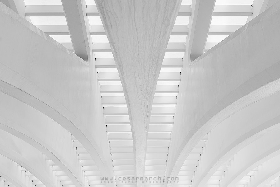Photograph White lines III by Cesar March on 500px