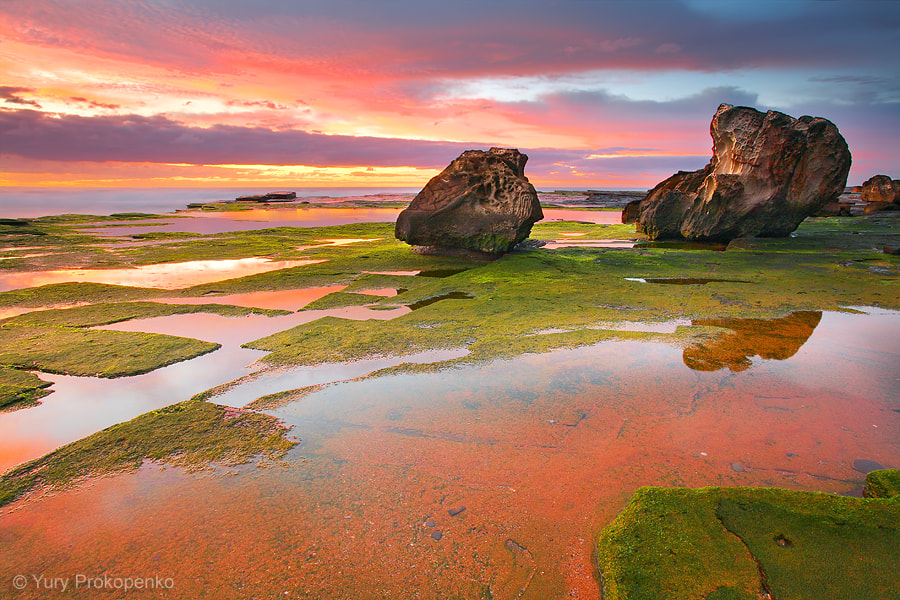 Photograph Green and Red by Yury Prokopenko on 500px