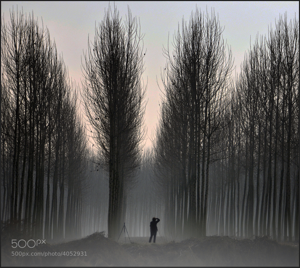Photograph beginning of 2012 with those who love photography by Silena  Lambertini on 500px