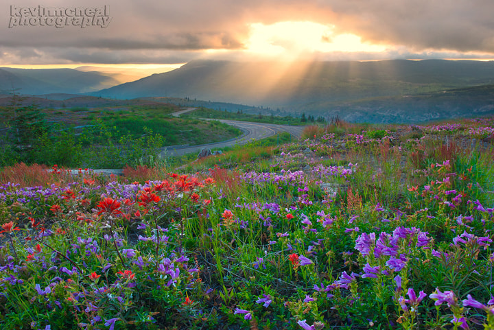 Photograph Mount St Helens  by Kevin McNeal on 500px