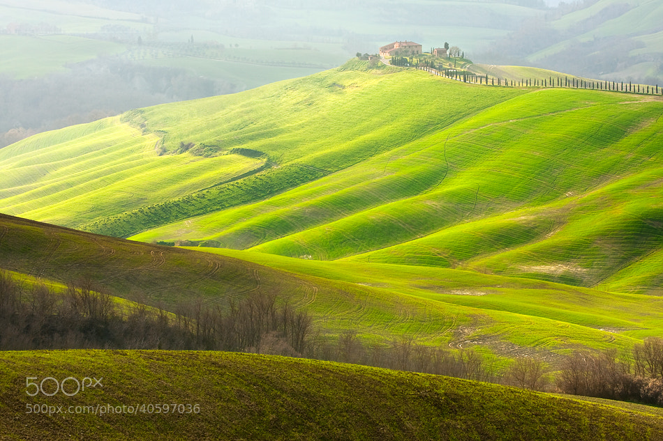 Photograph House with cypress comb by Marcin Sobas on 500px