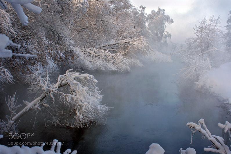 Photograph Зимняя новелла 3 by Андрей Войцехов on 500px