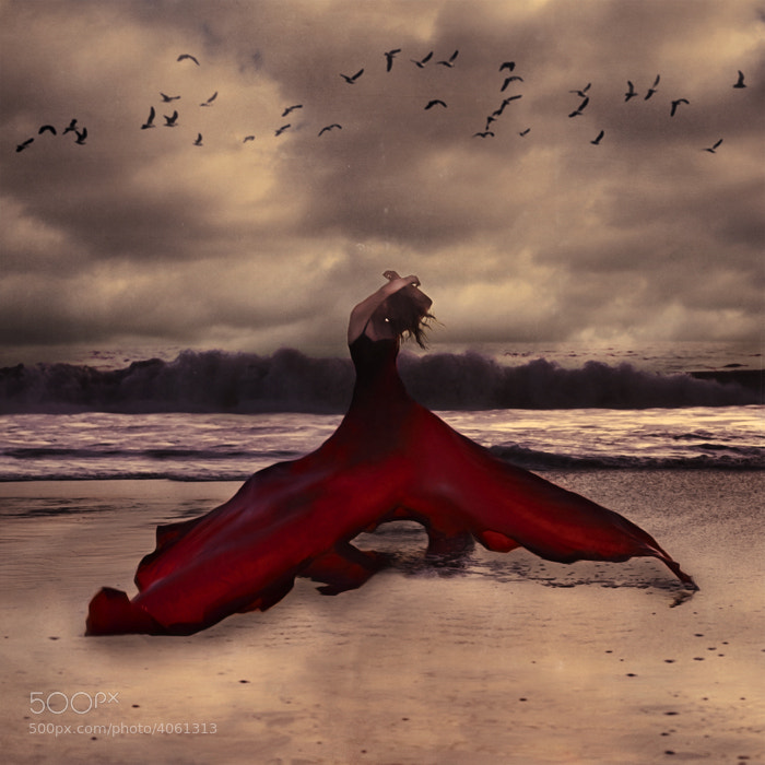 Photograph Red Whale by Brooke Shaden on 500px