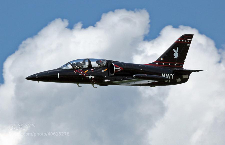 "L-39C Albatross flown by Mark ""Crunchy"" Burgess."