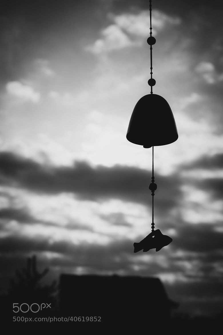 Photograph Wind Chime - Black & White (I) by Team B&K on 500px
