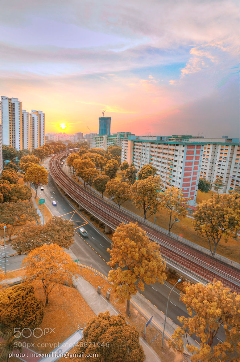 Photograph Autumn in Singapore by Maung Maung Hla Win on 500px