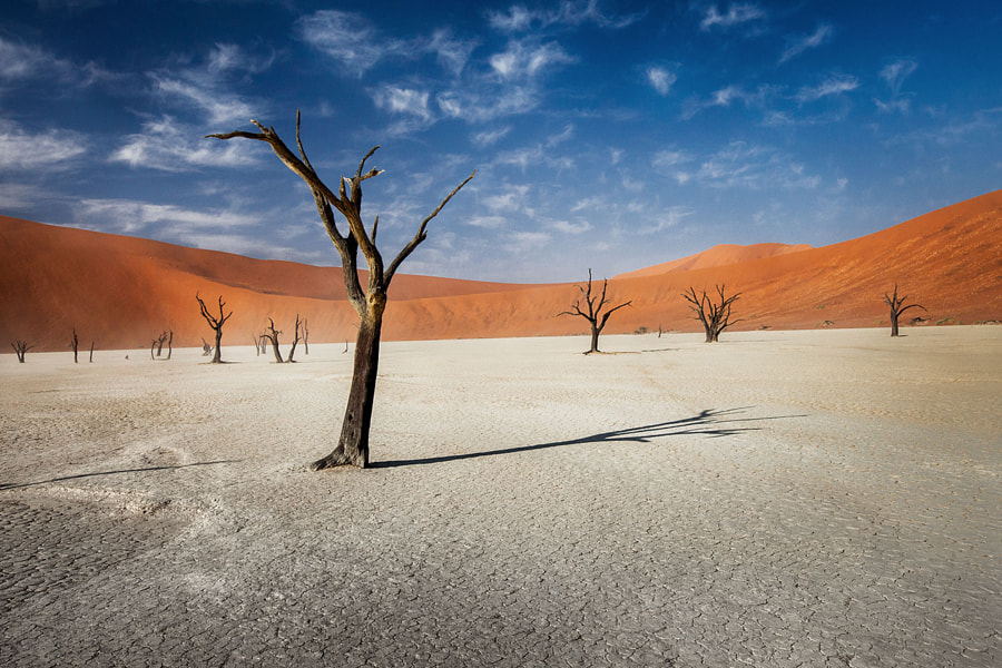 Old desert by Marina Sorokina on 500px.com