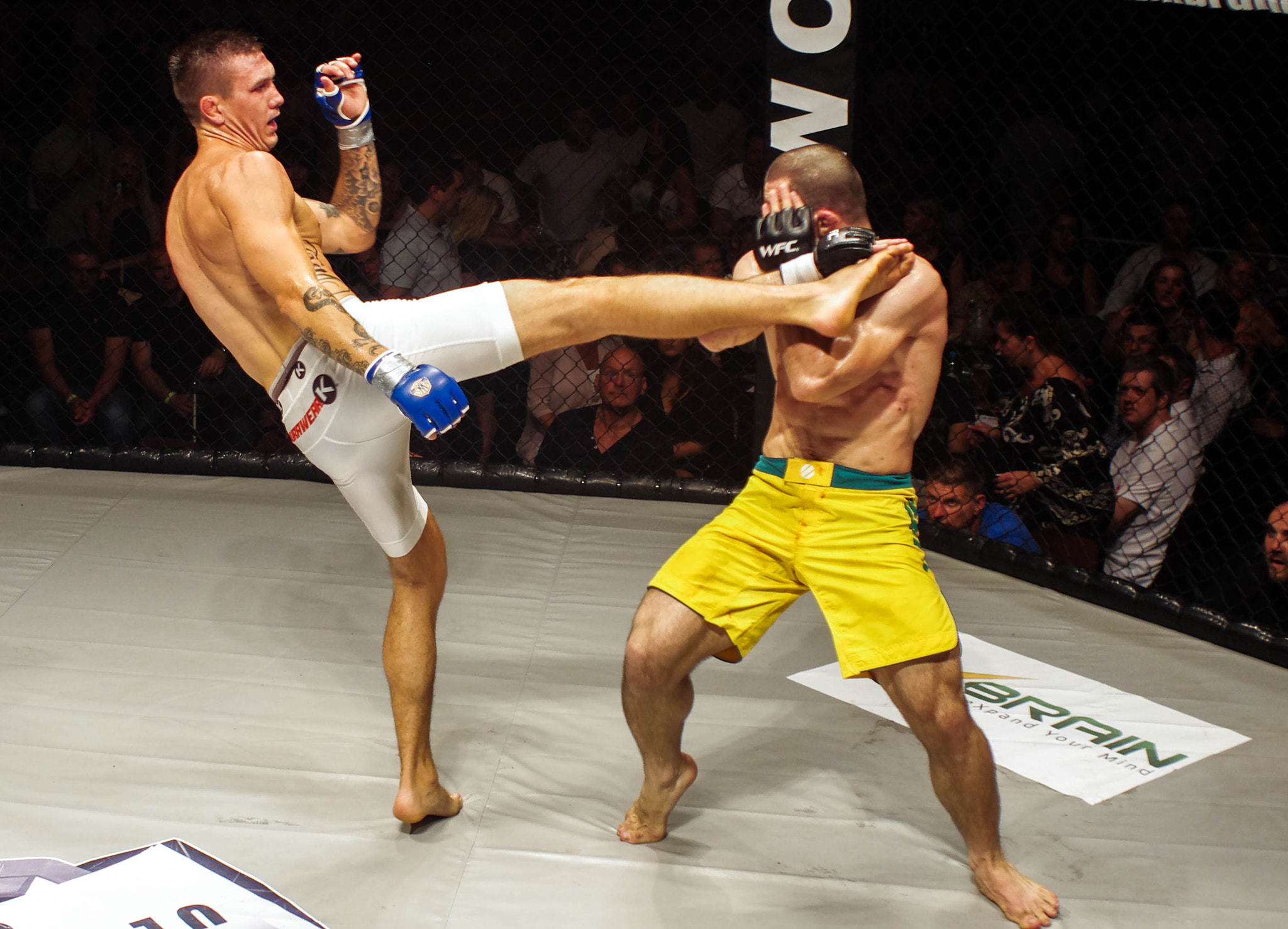 Photograph MMA by Lee Ashman on 500px
