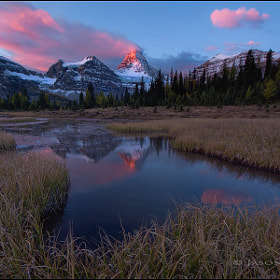 Mt Assiniboine by Jason Edlund (JasonEdlund)) on 500px.com