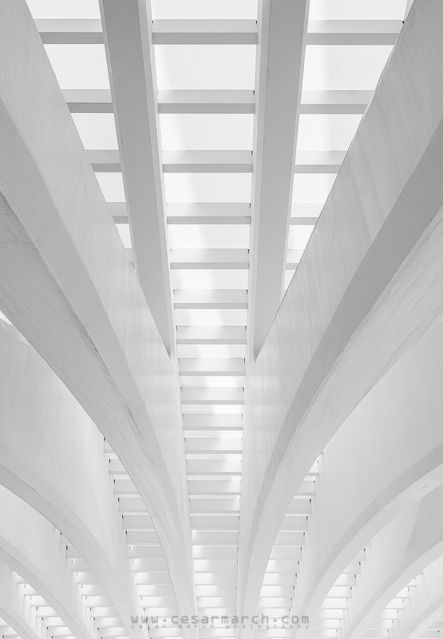 Photograph White lines IV by Cesar March on 500px