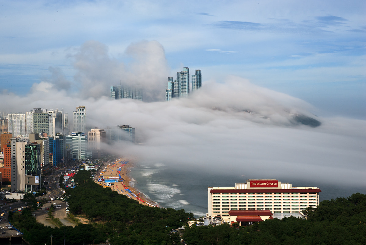 Photograph The sea fog comes by Sung Chul Park on 500px