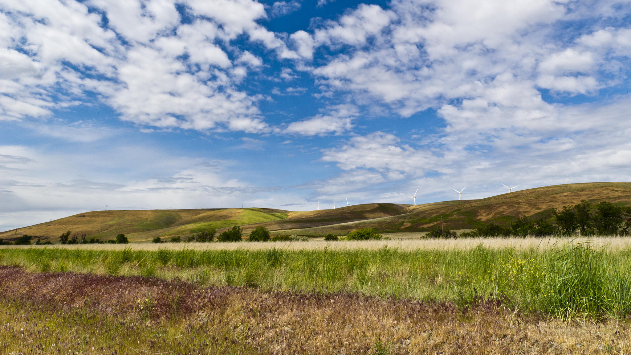 Photograph Palouse Scenic Byway Memories by Debbie Tubridy on 500px