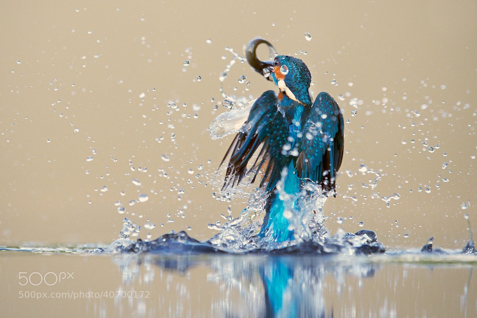 Photograph quick dip by Mark Bridger on 500px