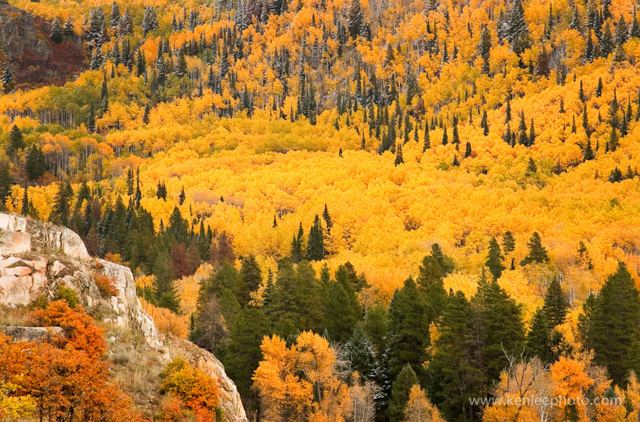 Photograph Fish  Creek Canyon in Fall by Ken Lee on 500px