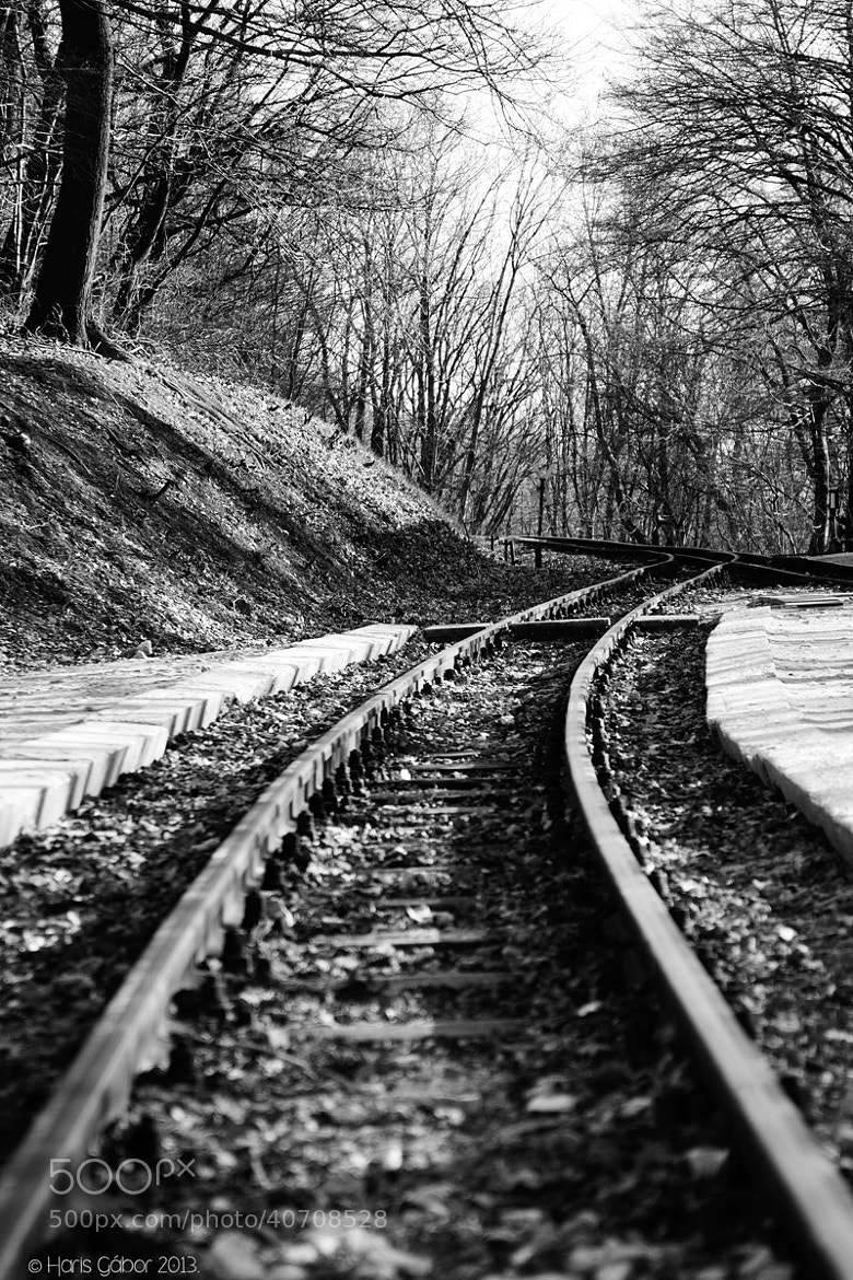 Photograph Rails by HGL _Photo on 500px
