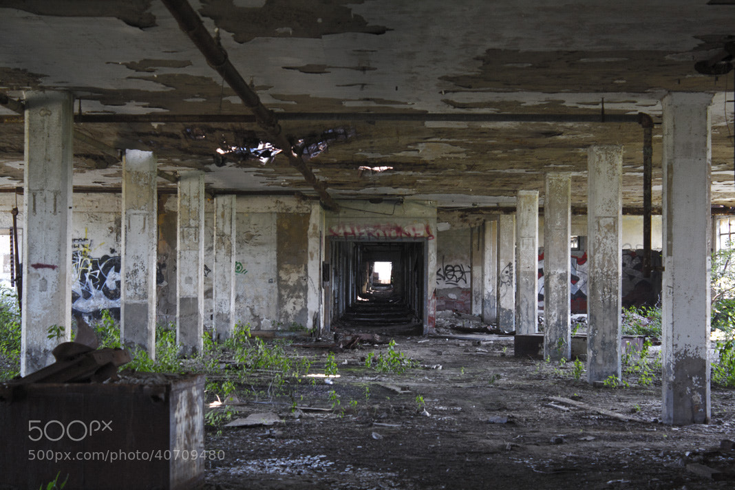Photograph Abandoned by Brianna DeJoy on 500px