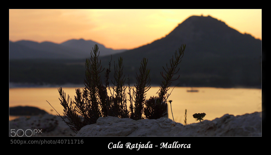 Photograph Last light in Mallorca by Simon Kurz on 500px