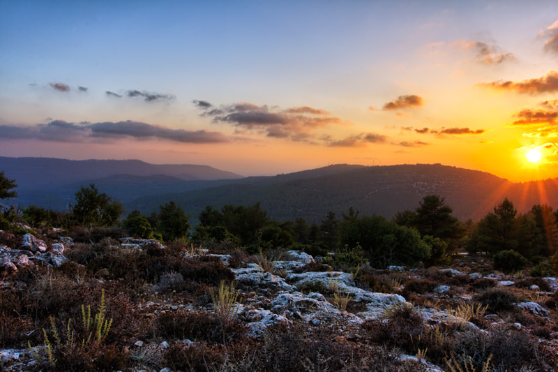 Photograph Touch Of The Sun by Yaniv Nissim on 500px
