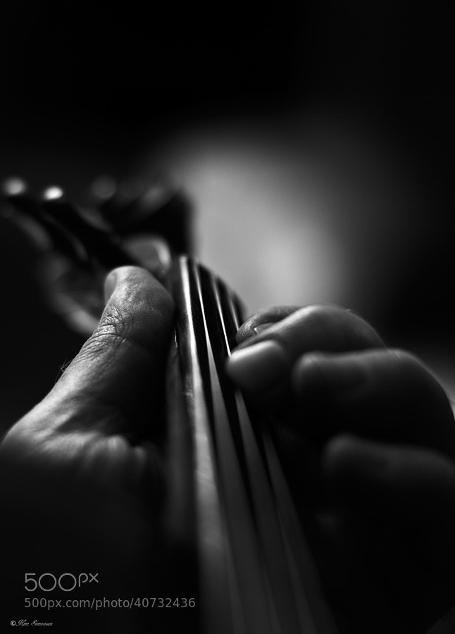 Photograph Violin by Kim Simonsen on 500px