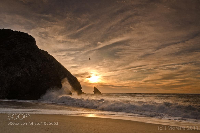 Photograph Praia da Adraga #3 by Fernando Moreira on 500px