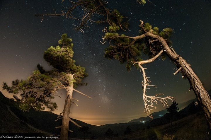 Photograph Woods milky way by Stefano Rossi on 500px