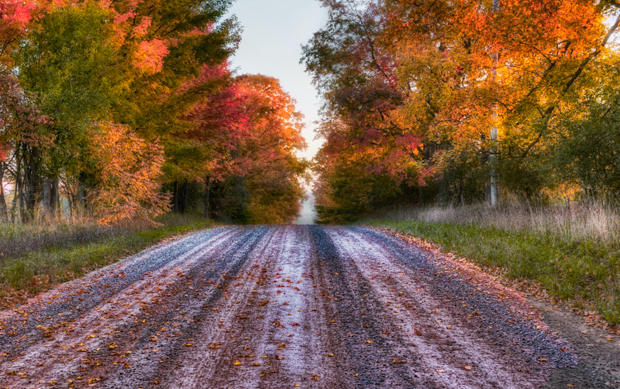Photograph Back Road in Autumn by Tom Baker on 500px