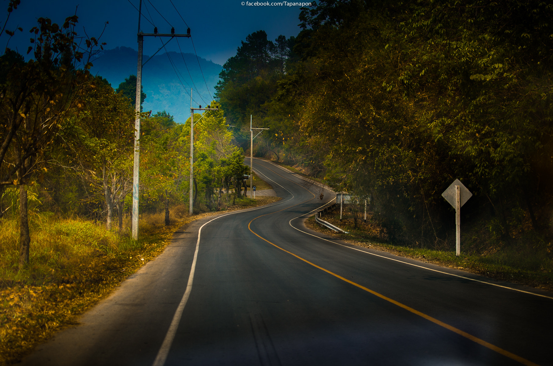 Photograph S Curve by Nickie Tapanapon on 500px