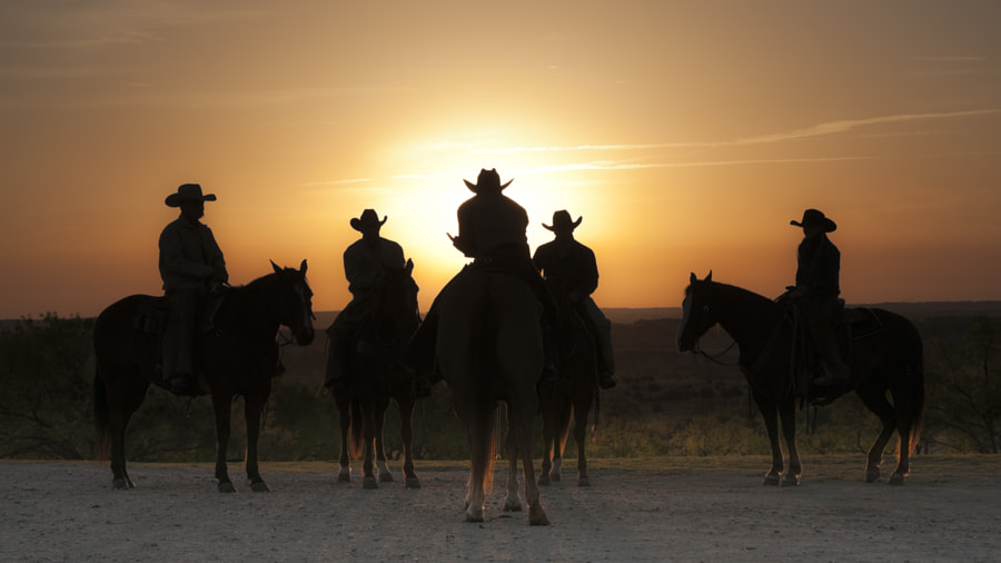 image taken on the Saunders Twin V Ranch near Weatherford, Texas