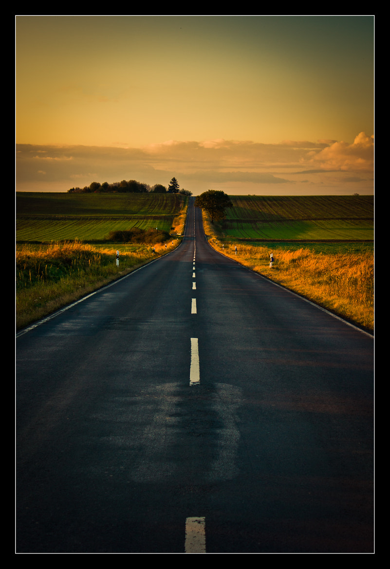 Photograph Road to nowhere by Alexander Strauch on 500px