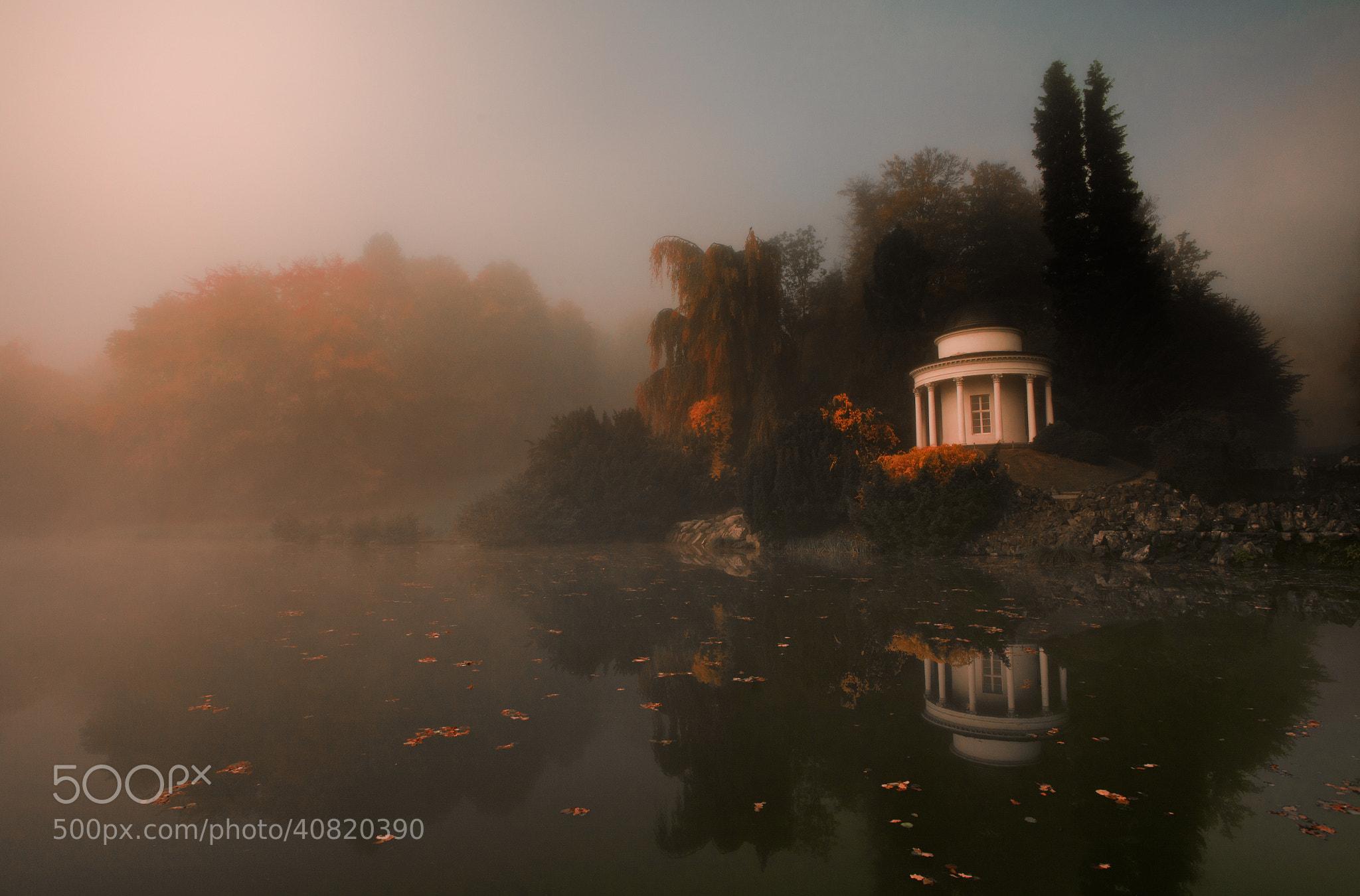 Photograph autumn.... by Planetmonkeys 老鼠 on 500px