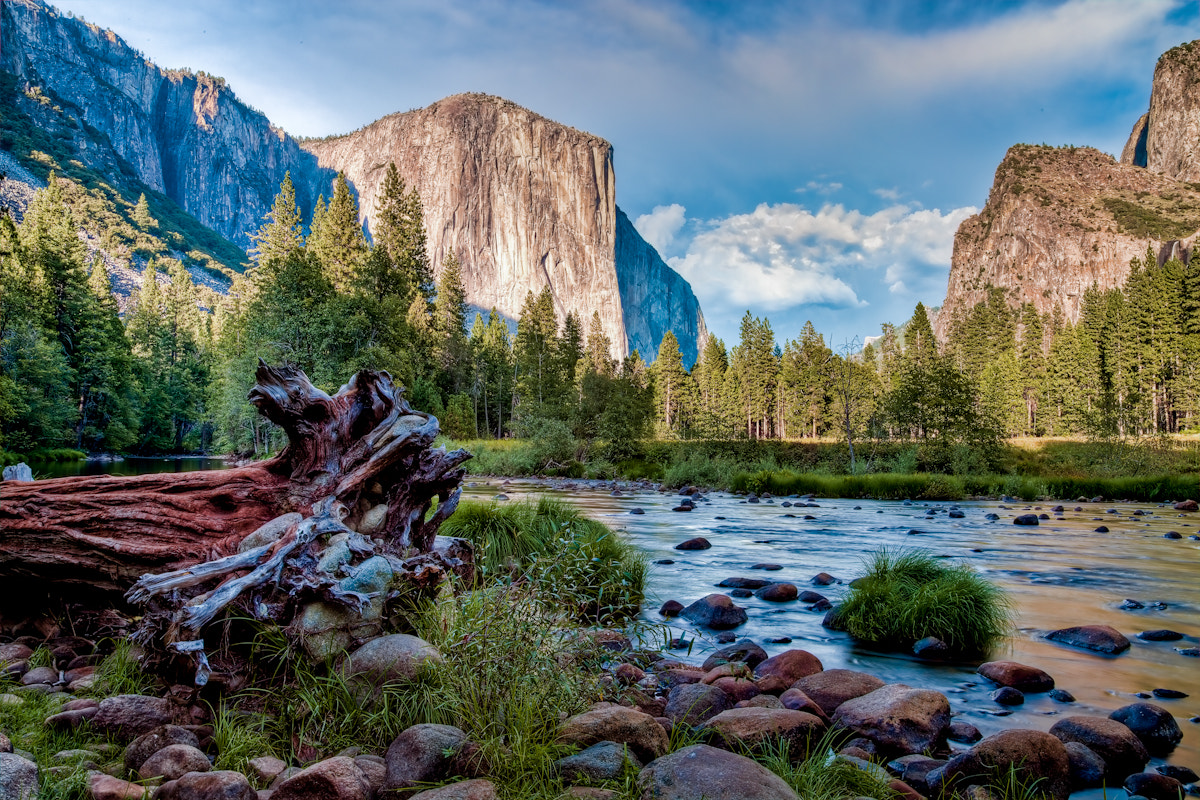 Photograph El Capitan by Cindy Costa on 500px