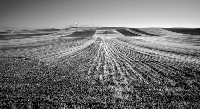 Photograph The Field by Konstantinos Besios on 500px