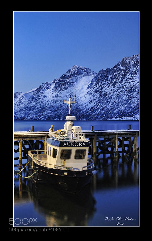 Photograph Arctic light by Truls Christian Olsen on 500px