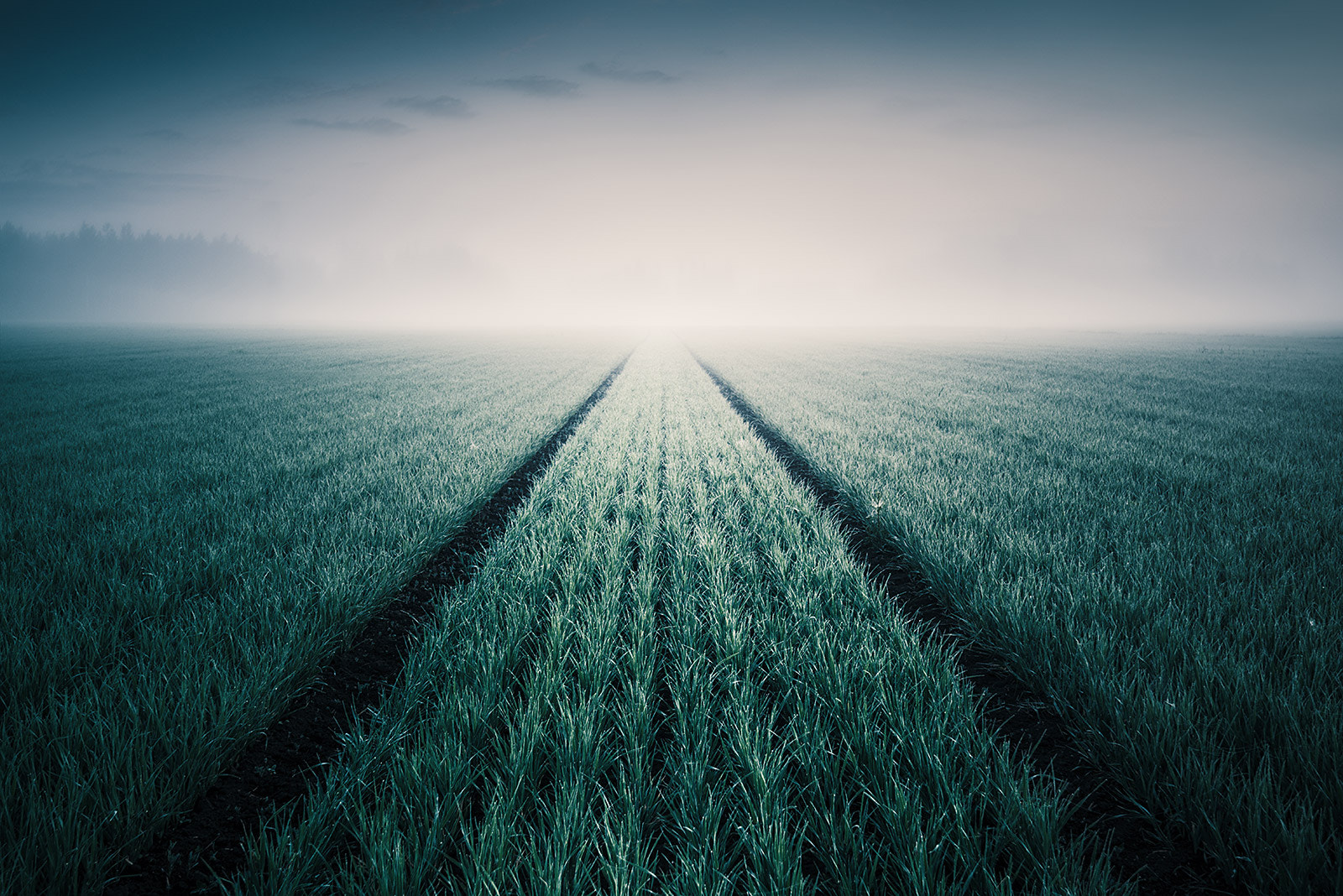 Photograph Infinity by Mikko Lagerstedt on 500px