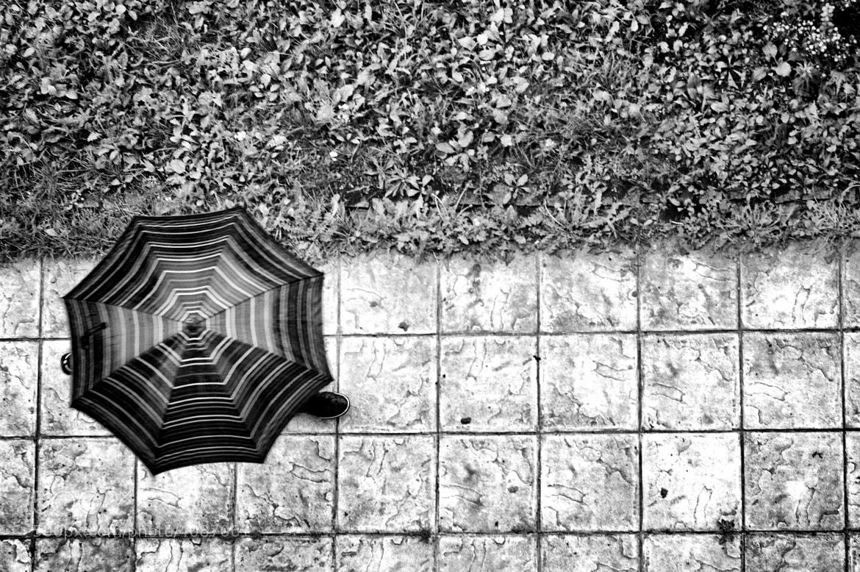 Photograph Street 07 by Mihailo Radičević on 500px