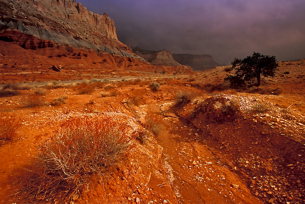 Photograph Capitol Reef National Park by Fikret Onal on 500px
