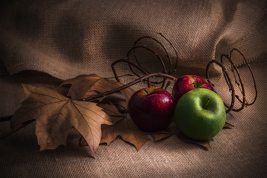 Photograph Apples by Gustavo Ramos on 500px